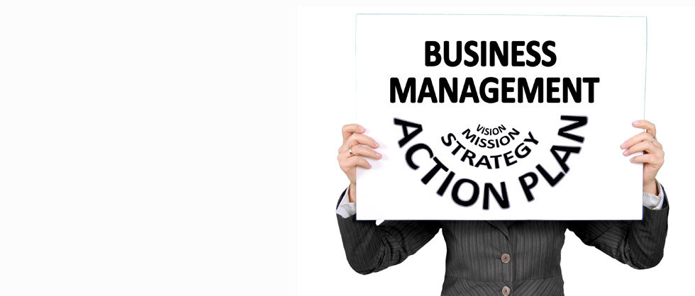Utilize information technology to meet your business needs and goals